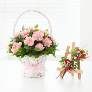 핑크카네이션+코사지무료